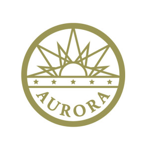 Aurora CO Phone Systems